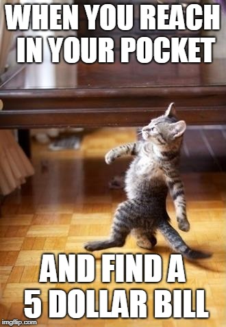 Cool Cat Stroll | WHEN YOU REACH IN YOUR POCKET AND FIND A 5 DOLLAR BILL | image tagged in memes,cool cat stroll | made w/ Imgflip meme maker
