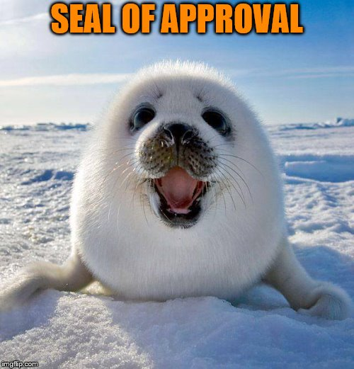 cute seal | SEAL OF APPROVAL | image tagged in cute seal | made w/ Imgflip meme maker