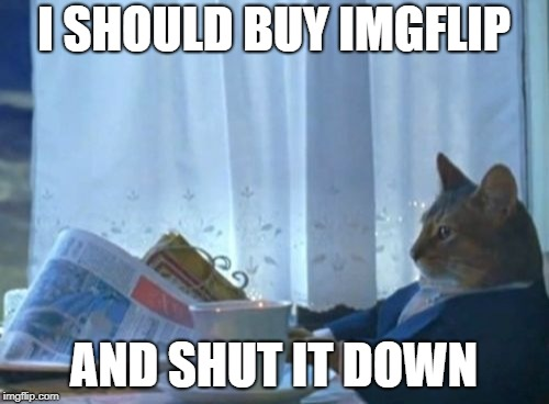 I Should Buy A Boat Cat Meme | I SHOULD BUY IMGFLIP AND SHUT IT DOWN | image tagged in memes,i should buy a boat cat | made w/ Imgflip meme maker
