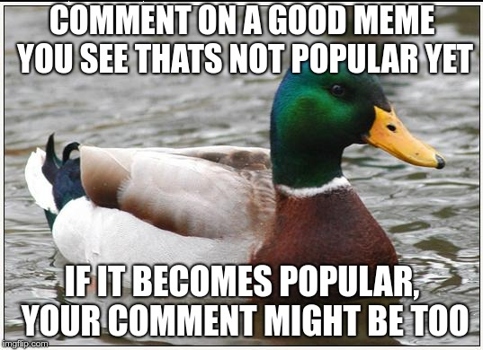 Actual Advice Mallard Meme |  COMMENT ON A GOOD MEME YOU SEE THATS NOT POPULAR YET; IF IT BECOMES POPULAR, YOUR COMMENT MIGHT BE TOO | image tagged in memes,actual advice mallard | made w/ Imgflip meme maker