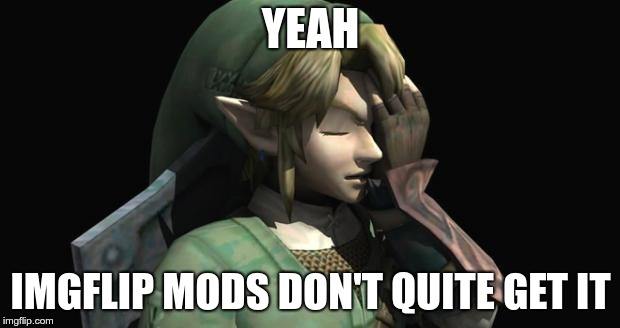 Link Facepalm | YEAH IMGFLIP MODS DON'T QUITE GET IT | image tagged in link facepalm | made w/ Imgflip meme maker