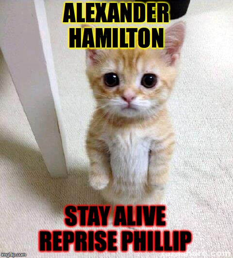 Cute Cat | ALEXANDER HAMILTON STAY ALIVE REPRISE PHILLIP | image tagged in memes,cute cat | made w/ Imgflip meme maker