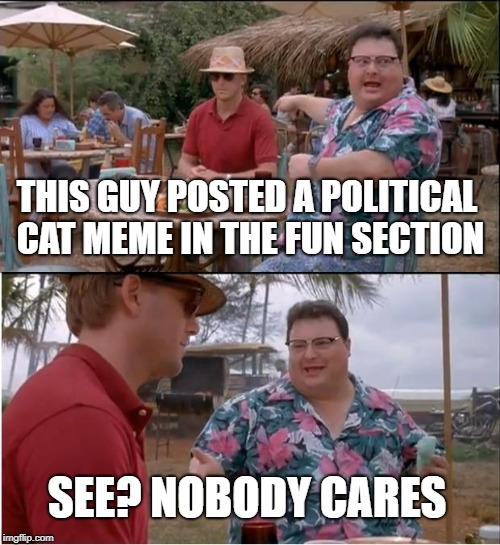 These categories are confusing me | THIS GUY POSTED A POLITICAL CAT MEME IN THE FUN SECTION SEE? NOBODY CARES | image tagged in memes,see nobody cares | made w/ Imgflip meme maker