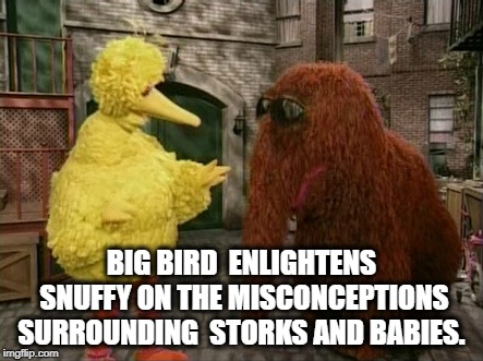 THE HORRIBLE TRUTH.... | BIG BIRD  ENLIGHTENS SNUFFY ON THE MISCONCEPTIONS SURROUNDING  STORKS AND BABIES. | image tagged in memes,big bird and snuffy,babies,birds and bees,sad truth | made w/ Imgflip meme maker