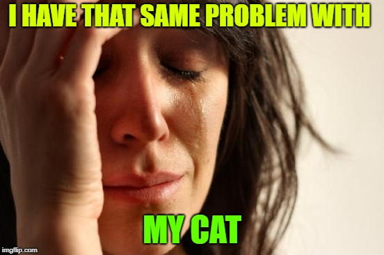 First World Problems Meme | I HAVE THAT SAME PROBLEM WITH MY CAT | image tagged in memes,first world problems | made w/ Imgflip meme maker