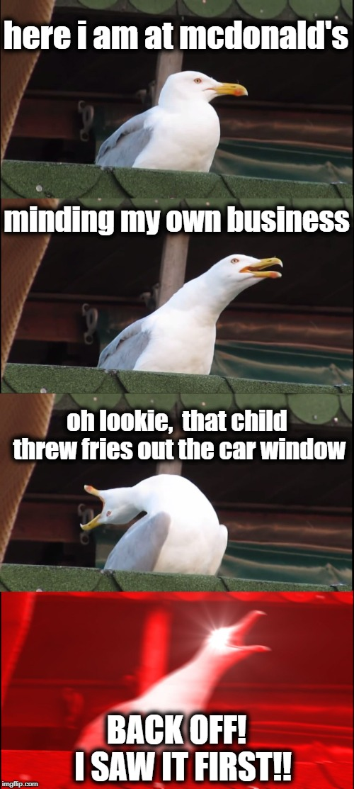 Just another day in a McDonald's parking lot | here i am at mcdonald's minding my own business oh lookie,  that child threw fries out the car window BACK OFF!  I SAW IT FIRST!! | image tagged in memes,inhaling seagull | made w/ Imgflip meme maker