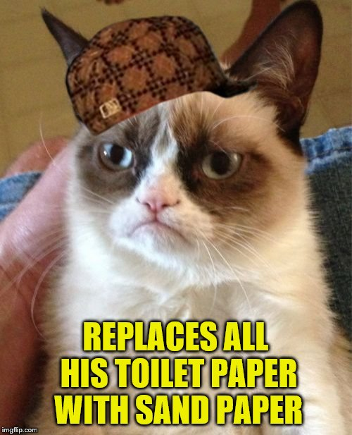 Grumpy Cat Meme | REPLACES ALL HIS TOILET PAPER WITH SAND PAPER | image tagged in memes,grumpy cat,scumbag | made w/ Imgflip meme maker