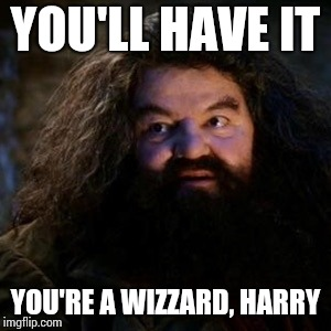You're a wizard harry | YOU'LL HAVE IT YOU'RE A WIZZARD, HARRY | image tagged in you're a wizard harry | made w/ Imgflip meme maker