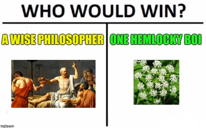 Who Would Win? Meme | A WISE PHILOSOPHER ONE HEMLOCKY BOI | image tagged in memes,who would win | made w/ Imgflip meme maker