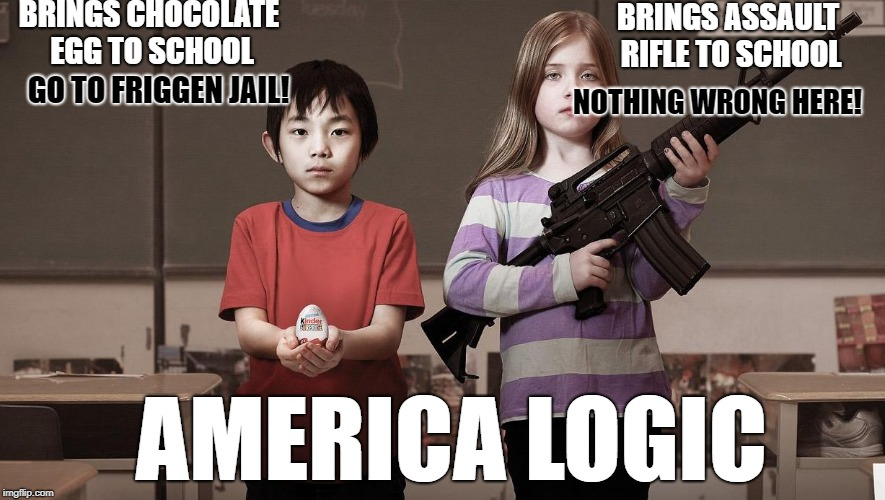America logic | BRINGS CHOCOLATE EGG TO SCHOOL BRINGS ASSAULT RIFLE TO SCHOOL GO TO FRIGGEN JAIL! NOTHING WRONG HERE! AMERICA LOGIC | image tagged in banned not banned,america,logic,so true memes,wtf | made w/ Imgflip meme maker