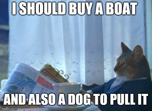 I Should Buy A Boat Cat | I SHOULD BUY A BOAT AND ALSO A DOG TO PULL IT | image tagged in memes,i should buy a boat cat,cats,dogs,pets,grumpy dog | made w/ Imgflip meme maker