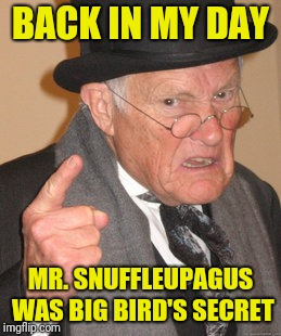 In honour of retiring big bird pupateer. This goes waaaayyyy back. | BACK IN MY DAY MR. SNUFFLEUPAGUS WAS BIG BIRD'S SECRET | image tagged in memes,back in my day,sewmyeyesshut,funny,big bird,mr snuffleupagus | made w/ Imgflip meme maker