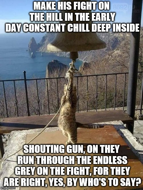 Metallica fans will get this | MAKE HIS FIGHT ON THE HILL IN THE EARLY DAY CONSTANT CHILL DEEP INSIDE SHOUTING GUN, ON THEY RUN THROUGH THE ENDLESS GREY ON THE FIGHT, FOR  | image tagged in for whom the bell tolls,metallica,cat,bell,lyrics | made w/ Imgflip meme maker