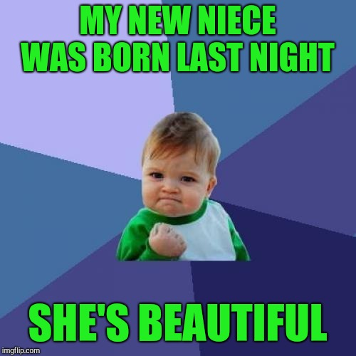 My brother is supposed to be having grandkids at his age, not kids lol | MY NEW NIECE WAS BORN LAST NIGHT SHE'S BEAUTIFUL | image tagged in memes,success kid,jbmemegeek | made w/ Imgflip meme maker