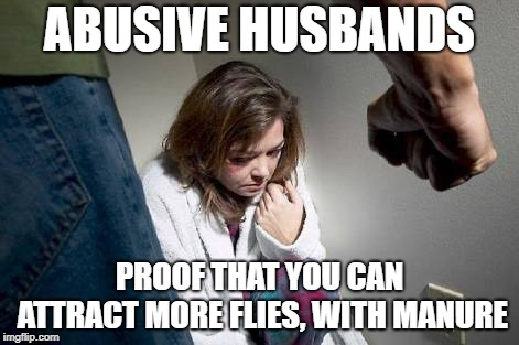 Proof | ABUSIVE HUSBANDS PROOF THAT YOU CAN ATTRACT MORE FLIES, WITH MANURE | image tagged in battered wife,domestic abuse | made w/ Imgflip meme maker