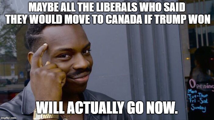 Roll Safe Think About It Meme | MAYBE ALL THE LIBERALS WHO SAID THEY WOULD MOVE TO CANADA IF TRUMP WON WILL ACTUALLY GO NOW. | image tagged in memes,roll safe think about it | made w/ Imgflip meme maker