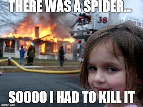 Disaster Girl Meme |  THERE WAS A SPIDER... SOOOO I HAD TO KILL IT | image tagged in memes,disaster girl | made w/ Imgflip meme maker