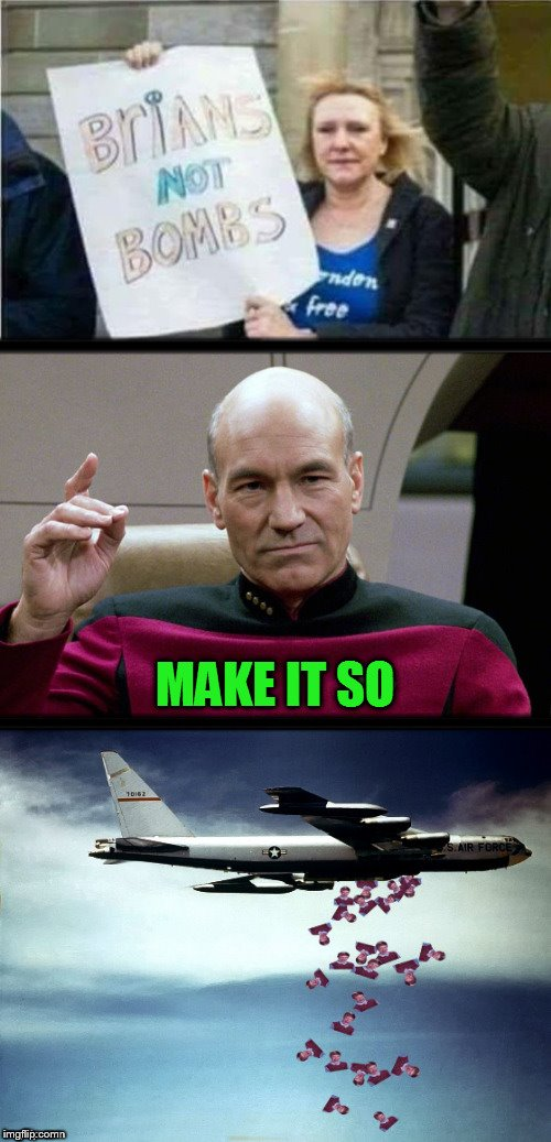 Hey Brian are you a B-52? Because you're the Bomb! | BRIANS NOT BOMBS MAKE IT SO | image tagged in memes,bad luck brian,b-52 bomber,picard make it so,bombs,pick up lines | made w/ Imgflip meme maker
