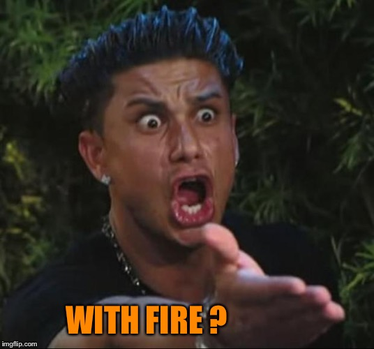 DJ Pauly D Meme | WITH FIRE ? | image tagged in memes,dj pauly d | made w/ Imgflip meme maker
