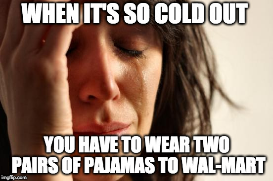 People of | WHEN IT'S SO COLD OUT YOU HAVE TO WEAR TWO PAIRS OF PAJAMAS TO WAL-MART | image tagged in memes,first world problems,people of walmart,walmart,cold,winter | made w/ Imgflip meme maker