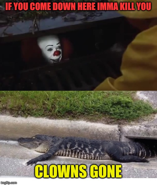 What a clown! | IF YOU COME DOWN HERE IMMA KILL YOU CLOWNS GONE | image tagged in it,alligator,funny,clowns,funny memes | made w/ Imgflip meme maker