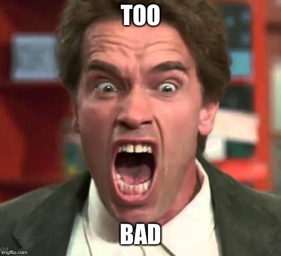 Arnold yelling | TOO BAD | image tagged in arnold yelling | made w/ Imgflip meme maker