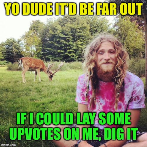 Heathen hippie | YO DUDE IT'D BE FAR OUT IF I COULD LAY SOME UPVOTES ON ME, DIG IT | image tagged in heathen hippie | made w/ Imgflip meme maker