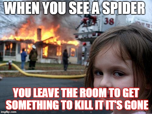 Disaster Girl Meme | WHEN YOU SEE A SPIDER YOU LEAVE THE ROOM TO GET SOMETHING TO KILL IT IT'S GONE | image tagged in memes,disaster girl | made w/ Imgflip meme maker