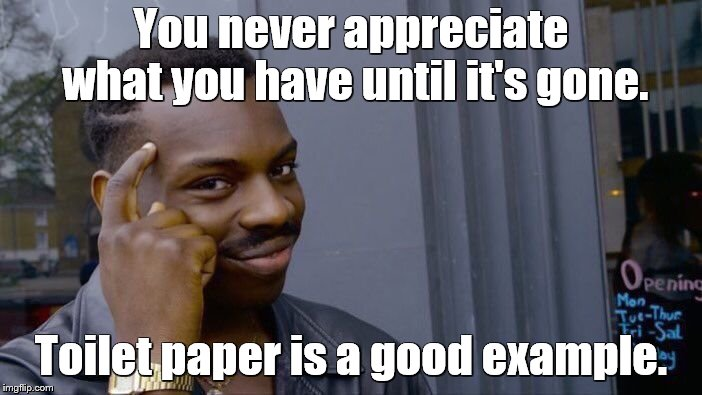 Roll Safe Think About It Meme | You never appreciate what you have until it's gone. Toilet paper is a good example. | image tagged in memes,roll safe think about it,toilet paper,no more toilet paper,toilet humor | made w/ Imgflip meme maker