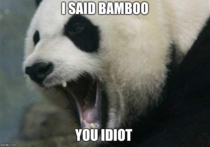 I SAID BAMBOO YOU IDIOT | image tagged in panda,angry,memes | made w/ Imgflip meme maker