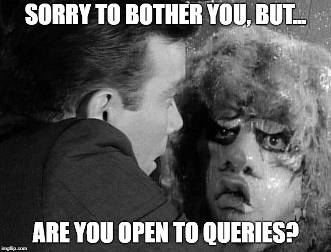 Are You Open To Queries? | SORRY TO BOTHER YOU, BUT... ARE YOU OPEN TO QUERIES? | image tagged in literary agent,writer's life,writer,query,publisher | made w/ Imgflip meme maker