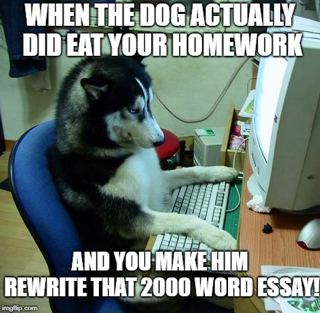 It could happen! |  WHEN THE DOG ACTUALLY DID EAT YOUR HOMEWORK; AND YOU MAKE HIM REWRITE THAT 2000 WORD ESSAY! | image tagged in memes,i have no idea what i am doing,dogs,dog,dog memes,funny dogs | made w/ Imgflip meme maker