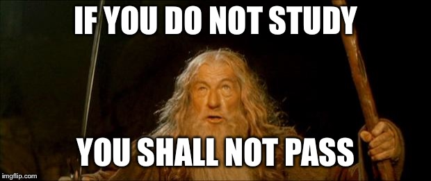 gandalf you shall not pass |  IF YOU DO NOT STUDY; YOU SHALL NOT PASS | image tagged in gandalf you shall not pass | made w/ Imgflip meme maker