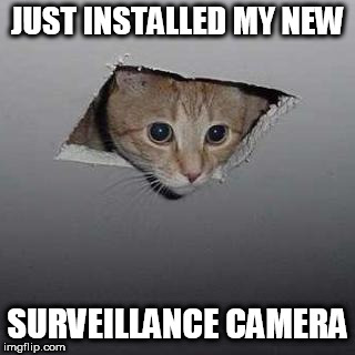 Ceiling Cat | JUST INSTALLED MY NEW SURVEILLANCE CAMERA | image tagged in memes,ceiling cat | made w/ Imgflip meme maker