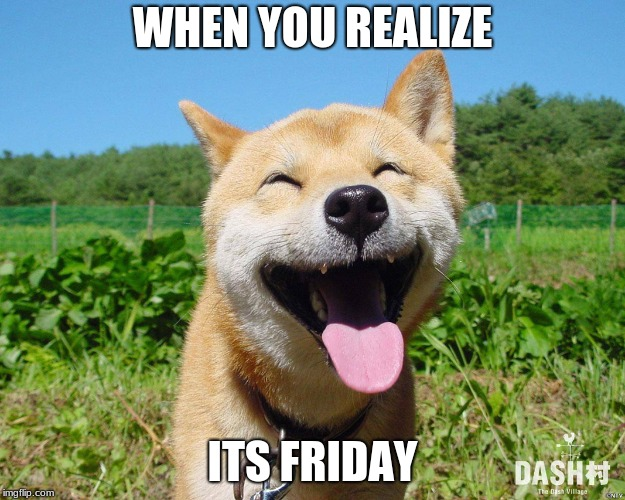 WHEN YOU REALIZE ITS FRIDAY | image tagged in happiness | made w/ Imgflip meme maker
