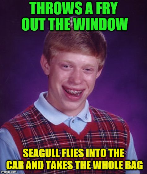 Bad Luck Brian Meme | THROWS A FRY OUT THE WINDOW SEAGULL FLIES INTO THE CAR AND TAKES THE WHOLE BAG | image tagged in memes,bad luck brian | made w/ Imgflip meme maker