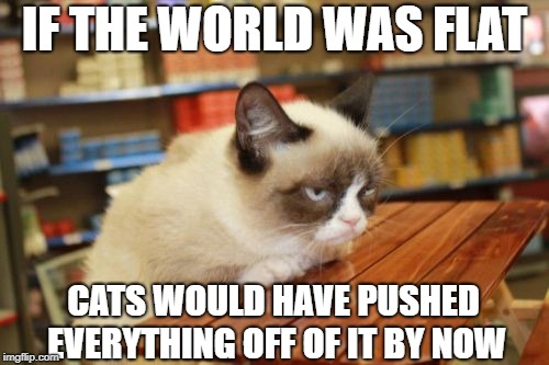 Grumpy Cat Table | IF THE WORLD WAS FLAT CATS WOULD HAVE PUSHED EVERYTHING OFF OF IT BY NOW | image tagged in memes,grumpy cat table,grumpy cat | made w/ Imgflip meme maker