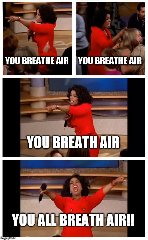 Oprah You Get A Car Everybody Gets A Car | YOU BREATHE AIR YOU BREATHE AIR YOU BREATH AIR YOU ALL BREATH AIR!! | image tagged in memes,oprah you get a car everybody gets a car | made w/ Imgflip meme maker
