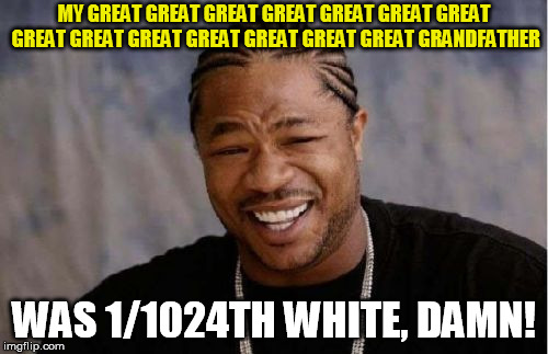 Yo Dawg Heard You |  MY GREAT GREAT GREAT GREAT GREAT GREAT GREAT GREAT GREAT GREAT GREAT GREAT GREAT GREAT GRANDFATHER; WAS 1/1024TH WHITE, DAMN! | image tagged in memes,yo dawg heard you | made w/ Imgflip meme maker