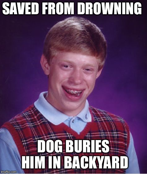 Bad Luck Brian Meme | SAVED FROM DROWNING DOG BURIES HIM IN BACKYARD | image tagged in memes,bad luck brian | made w/ Imgflip meme maker