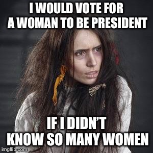 I WOULD VOTE FOR A WOMAN TO BE PRESIDENT IF I DIDN'T KNOW SO MANY WOMEN | image tagged in feminism | made w/ Imgflip meme maker