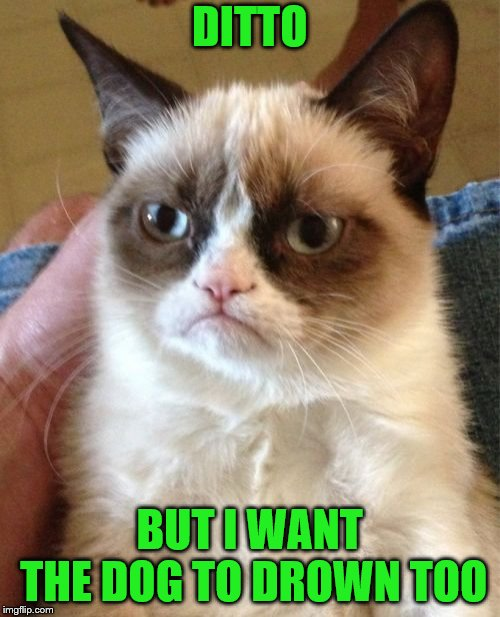 Grumpy Cat Meme | DITTO BUT I WANT THE DOG TO DROWN TOO | image tagged in memes,grumpy cat | made w/ Imgflip meme maker