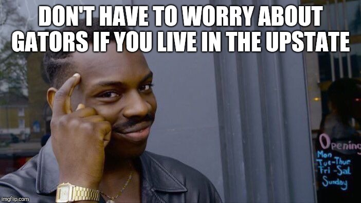 Roll Safe Think About It Meme | DON'T HAVE TO WORRY ABOUT GATORS IF YOU LIVE IN THE UPSTATE | image tagged in memes,roll safe think about it | made w/ Imgflip meme maker