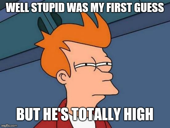 Futurama Fry Meme | WELL STUPID WAS MY FIRST GUESS BUT HE'S TOTALLY HIGH | image tagged in memes,futurama fry | made w/ Imgflip meme maker