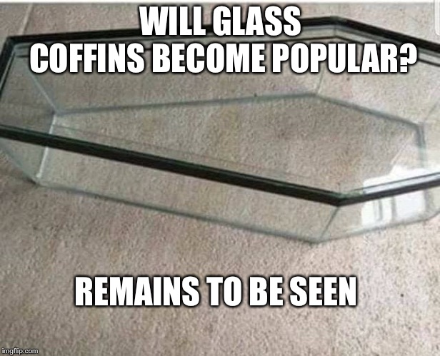 Remains to be seen | WILL GLASS COFFINS BECOME POPULAR? REMAINS TO BE SEEN | image tagged in coffin,glass,dead | made w/ Imgflip meme maker