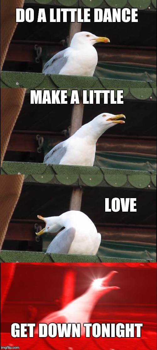 Inhaling Seagull Meme | DO A LITTLE DANCE MAKE A LITTLE LOVE GET DOWN TONIGHT | image tagged in memes,inhaling seagull | made w/ Imgflip meme maker