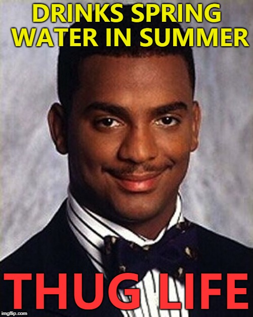 It gives him bounce... :) | DRINKS SPRING WATER IN SUMMER THUG LIFE | image tagged in carlton banks thug life,memes,water,seasons | made w/ Imgflip meme maker