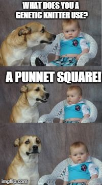 Science! | WHAT DOES YOU A GENETIC KNITTER USE? A PUNNET SQUARE! | image tagged in dad joke dog,science,genetics,dad joke,dog,baby | made w/ Imgflip meme maker