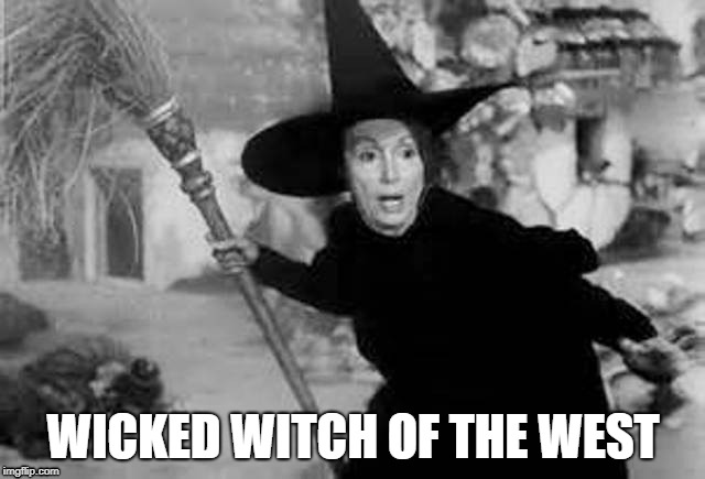 Nancy Pelosi |  WICKED WITCH OF THE WEST | image tagged in witch,wicked witch | made w/ Imgflip meme maker