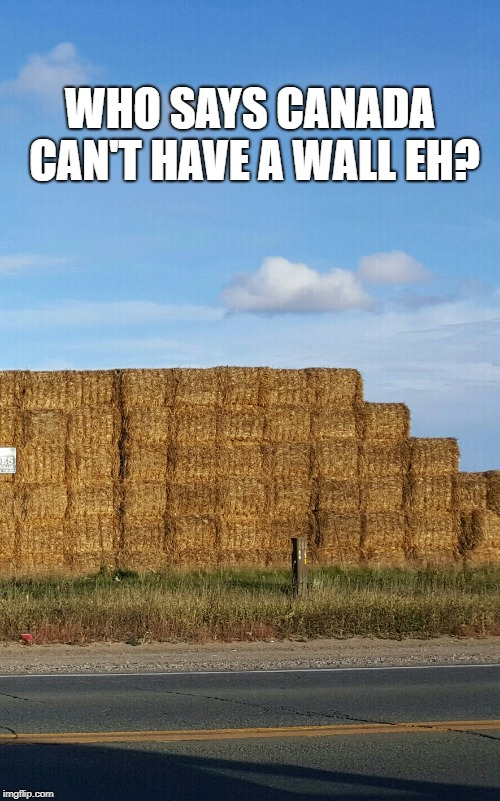 MEANWHILE IN CANADA... | WHO SAYS CANADA CAN'T HAVE A WALL EH? | image tagged in meanwhile in canada | made w/ Imgflip meme maker